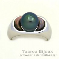 .925 Solid Silver + Rhodium Ring and 1 Tahitian Pearl Round B 9.3 mm