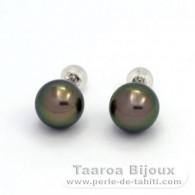 18K Solid White Gold Earrings and 2 Tahitian Pearls Round B 9.5 mm