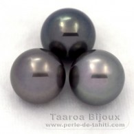 Lot of 3 Tahitian Pearls Round C from 11.6 to 11.9 mm