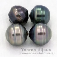 Lot of 4 Tahitian Pearls Ringed C from 9.5 to 9.8 mm