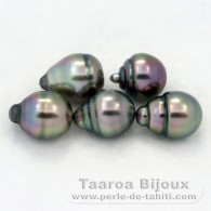 Lot of 5 Tahitian Pearls Ringed B from 8.6 to 8.8 mm
