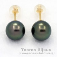 18K solid Gold Earrings and 2 Tahitian Pearls Round 1 A & 1 B 8.8 mm