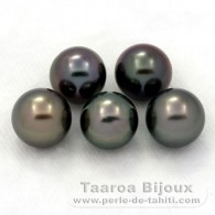 Lot of 5 Tahitian Pearls Round C from 8 to 8.4 mm