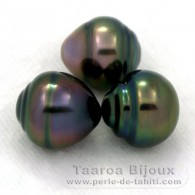 Lot of 3 Tahitian Pearls Ringed B from 9.7 to 9.9 mm