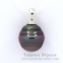 Rhodiated Sterling Silver Pendant and 1 Tahitian Pearl Ringed B 10.8 mm