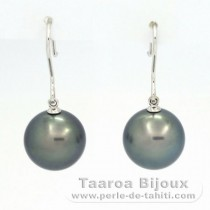 18K Solid White Gold Earrings and 2 Tahitian Pearls Round C 12 mm