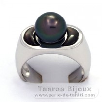 Rhodiated Sterling Silver + Rhodium Ring  and 1 Tahitian Pearl Round B  9.1 mm