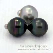 Lot of 3 Tahitian Pearls Ringed C from 12.4 to 12.8 mm