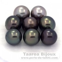 Lot of 8 Tahitian Pearls Round C from 8.7 to 8.9 mm