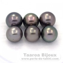 Lot of 6 Tahitian Pearls Round C from 9 to 9.3 mm