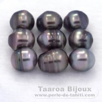 Lot of 9 Tahitian Pearls Ringed C from 8 to 8.4 mm