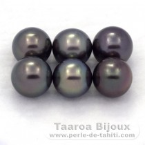 Lot of 6 Tahitian Pearls Round C from 9 to 9.2 mm