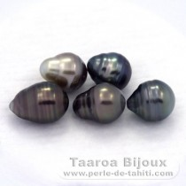 Lot of 5 Tahitian Pearls Ringed C from 9.5 to 9.6 mm