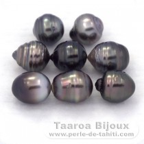 Lot of 8 Tahitian Pearls Ringed D from 8.5 to 8.8 mm