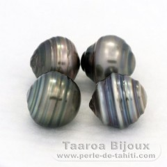 Lot of 4 Tahitian Pearls Ringed C from 9.5 to 9.6 mm