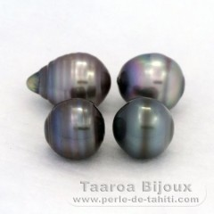 Lot of 4 Tahitian Pearls Ringed C from 9.6 to 9.9 mm