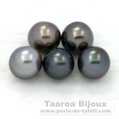 Lot of 5 Tahitian Pearls Semi-Baroque C/D from 8 to 8.4 mm