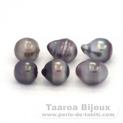 Lot of 6 Tahitian Pearls Ringed C from 8.5 to 8.9 mm