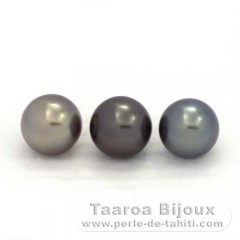 Lot of 3 Tahitian Pearls Near-Round C from 9.5 to 9.7 mm