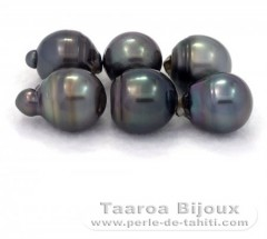 Lot of 6 Tahitian Pearls Ringed D from 14 à 14.9 mm
