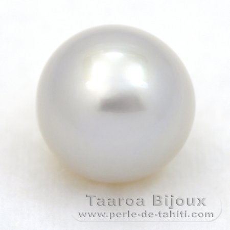 Australian Pearl Ringed B 15.1 mm