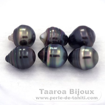 Lot of 6 Tahitian Pearls Ringed C from 8.5 to 8.7 mm