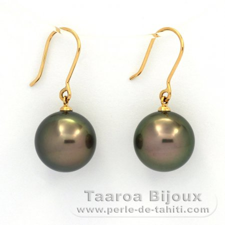 18K solid Gold Earrings and 2 Tahitian Pearls Round B/C 13.2 and 13.3 mm