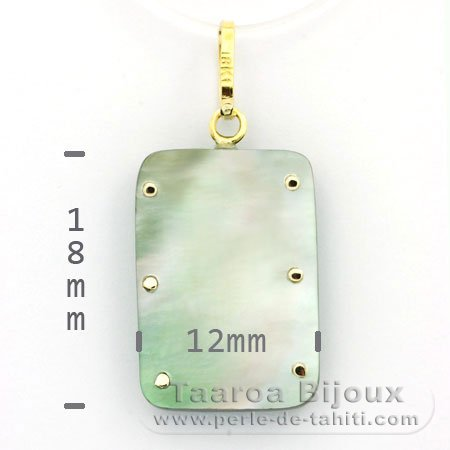 18K Gold and Tahitian Mother-of-Pearl Pendant - Dimensions = 18 X 12 mm - Turtle