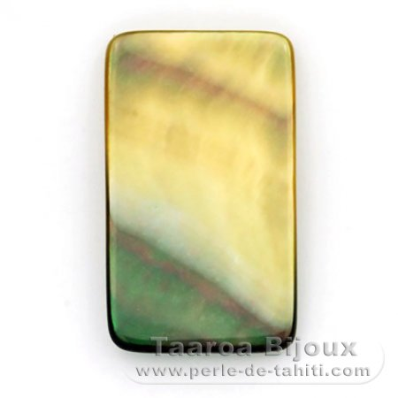 Tahitian mother-of-pearl rectangle shape - 27 x 16 mm