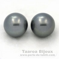 Lot of 2 tahitian Pearls Round C 12.5 mm