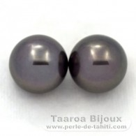 Lot of 2 Tahitian Pearls Round C 12.2 mm