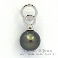 Rhodiated Sterling Silver Pendant and 1 Tahitian Pearl Round C 10.3 mm