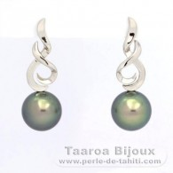 Rhodiated Sterling Silver Earrings and 2 Tahitian Pearls Round C 10.6 mm