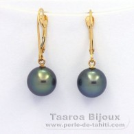 18K solid Gold Earrings and 2 Tahitian Pearls Round B+ 9 mm