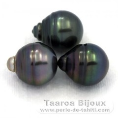 Lot of 3 Tahitian Pearls Ringed C from 12.5 to 12.7 mm