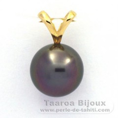 18K solid Gold Pendant and 1 tahitian Pearl Round B 9.5 mm