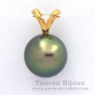 18K solid Gold Pendant and 1 Tahitian Pearl Round B+ 10.1 mm