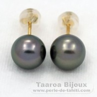 18K solid Gold Earrings and 2 tahitian Pearls Round B 8.5 mm