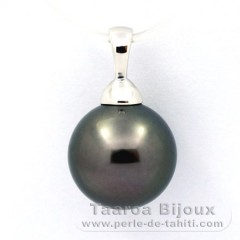 .925 Solid Silver Pendant and 1 tahitian Pearl Round C 11.7 mm