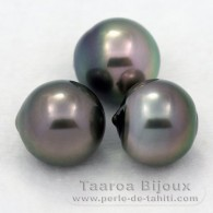 Lot of 3 tahitian Pearls Semi-Baroque C from 12 to 12.3 mm