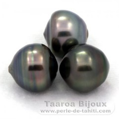 Lot of 3 Tahitian Pearls Ringed C from 12 to 12.3 mm