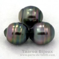 Lot of 3 Tahitian Pearls Ringed C from 12 to 12.2 mm