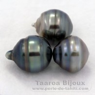 Lot of 3 Tahitian Pearls Ringed D from 12.5 to 12.6 mm
