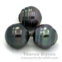 Lot of 3 Tahitian Pearls Ringed C from 12.6 to 12.7 mm