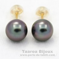 18K solid Gold Earrings and 2 Tahitian Pearls Round A 8.1 mm