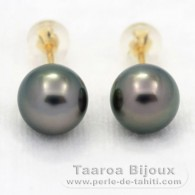 18K solid Gold Earrings and 2 Tahitian Pearls Round 1 A & 1 B 8.4 mm