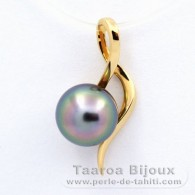 18K solid Gold Pendant and 1 Tahitian Pearl Round A 8 mm