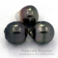 Lot of 3 Tahitian Pearls Ringed D from 12.1 to 12.3 mm