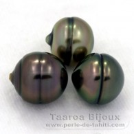 Lot of 3 Tahitian Pearls Ringed B from 10 to 10.2 mm