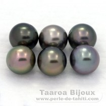 Lot of 6 Tahitian Pearls Round C from 8.2 to 8.4 mm